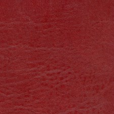Seabreeze Reel Red Drapery and Upholstery Fabric by Greenhouse