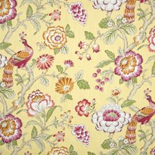 Maize Floral Drapery and Upholstery Fabric by Greenhouse
