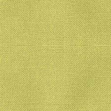 Limeade Drapery and Upholstery Fabric by Scalamandre