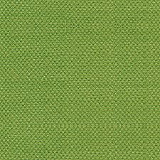 Tendril Drapery and Upholstery Fabric by Scalamandre
