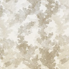 Silver Champagne Drapery and Upholstery Fabric by Scalamandre