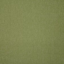 Pistachio Drapery and Upholstery Fabric by Pindler