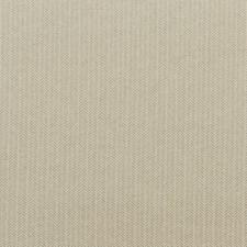 Silver Velvet Drapery and Upholstery Fabric by G P & J Baker