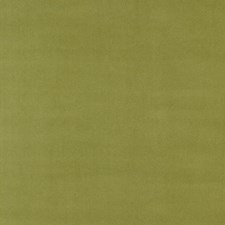 Sage Drapery and Upholstery Fabric by Scalamandre