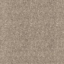Silverberry Drapery and Upholstery Fabric by Kasmir