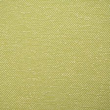 Kiwi Solid Drapery and Upholstery Fabric by Pindler