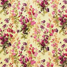 Yellow/Pink Botanical Drapery and Upholstery Fabric by Kravet