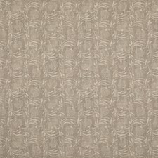 Dove Botanical Drapery and Upholstery Fabric by G P & J Baker