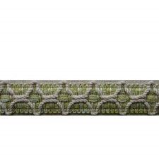 Gimp Honey Dew Trim by Brunschwig & Fils