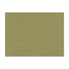 Khaki Drapery and Upholstery Fabric by Brunschwig & Fils