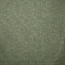 Fern Ethnic Drapery and Upholstery Fabric by Pindler
