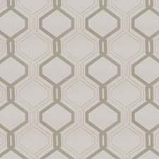 Silver Oak Drapery and Upholstery Fabric by RM Coco