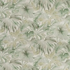 White/Sage/Grey Botanical Drapery and Upholstery Fabric by Kravet