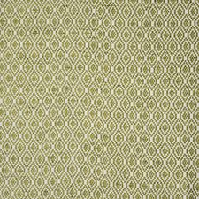 Wasabi Drapery and Upholstery Fabric by Maxwell