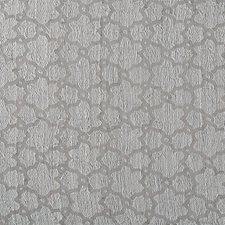 Light Gray Drapery and Upholstery Fabric by Scalamandre