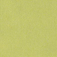 Green Apple Drapery and Upholstery Fabric by Scalamandre