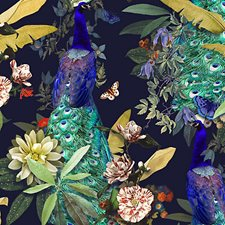 Peacock Drapery and Upholstery Fabric by Scalamandre
