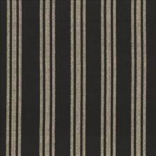 Ebony Drapery and Upholstery Fabric by Kasmir