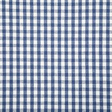 Marine Check Drapery and Upholstery Fabric by Pindler