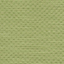 Apple Green Drapery and Upholstery Fabric by Scalamandre