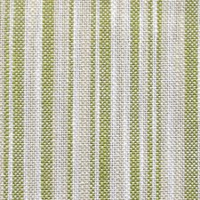 Germoglio Drapery and Upholstery Fabric by Scalamandre
