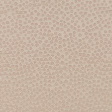 Blush Dots Drapery and Upholstery Fabric by Duralee