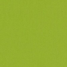 Wasabi Solid Drapery and Upholstery Fabric by Duralee