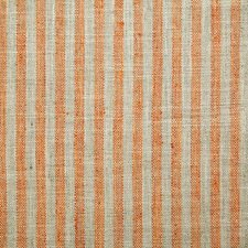 Koi Stripe Drapery and Upholstery Fabric by Pindler
