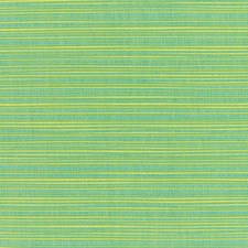 Paradise Drapery and Upholstery Fabric by RM Coco