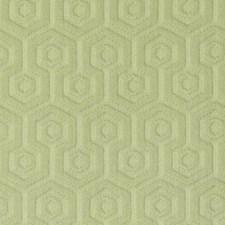Wasabi Drapery and Upholstery Fabric by Duralee