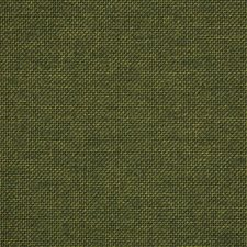 Pine Drapery and Upholstery Fabric by RM Coco