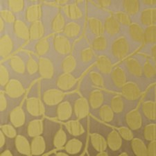 Citrus All Over Drapery and Upholstery Fabric by Clarke & Clarke