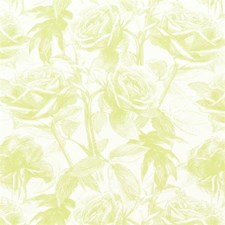 Citrus Floral Medium Drapery and Upholstery Fabric by Clarke & Clarke
