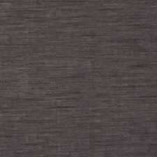 Charcoal Sheers Casements Wide Drapery and Upholstery Fabric by Clarke & Clarke
