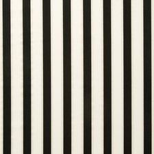 Ebony Stripes Drapery and Upholstery Fabric by Clarke & Clarke