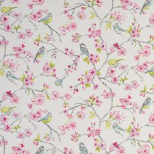 Pink Drapery and Upholstery Fabric by Clarke & Clarke
