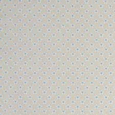 Stars Mineral Drapery and Upholstery Fabric by Clarke & Clarke