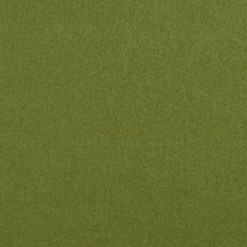 Amazon Solids Drapery and Upholstery Fabric by Clarke & Clarke