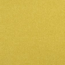 Sunshine Solids Drapery and Upholstery Fabric by Clarke & Clarke