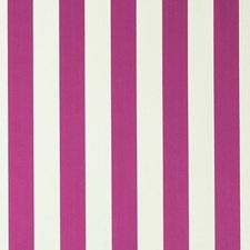 Fuchsia Stripes Drapery and Upholstery Fabric by Clarke & Clarke