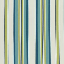 Apple/Citron Stripes Drapery and Upholstery Fabric by Clarke & Clarke