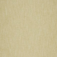 Honey Solids Drapery and Upholstery Fabric by Clarke & Clarke