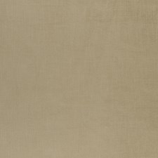 Straw Solids Drapery and Upholstery Fabric by Clarke & Clarke