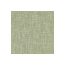 Apple Solid Drapery and Upholstery Fabric by Clarke & Clarke
