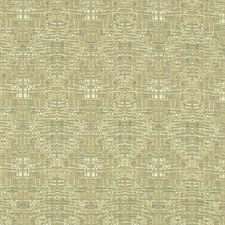 Parsley Drapery and Upholstery Fabric by RM Coco