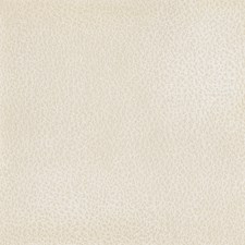 Cream Drapery and Upholstery Fabric by Silver State