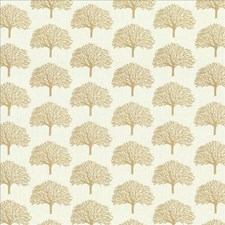 Dawn Drapery and Upholstery Fabric by Kasmir