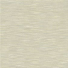Light Grey Drapery and Upholstery Fabric by Kasmir