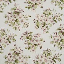 Chintz Drapery and Upholstery Fabric by Kasmir