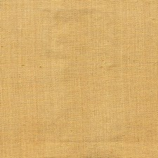 Old Gold Drapery and Upholstery Fabric by Kasmir